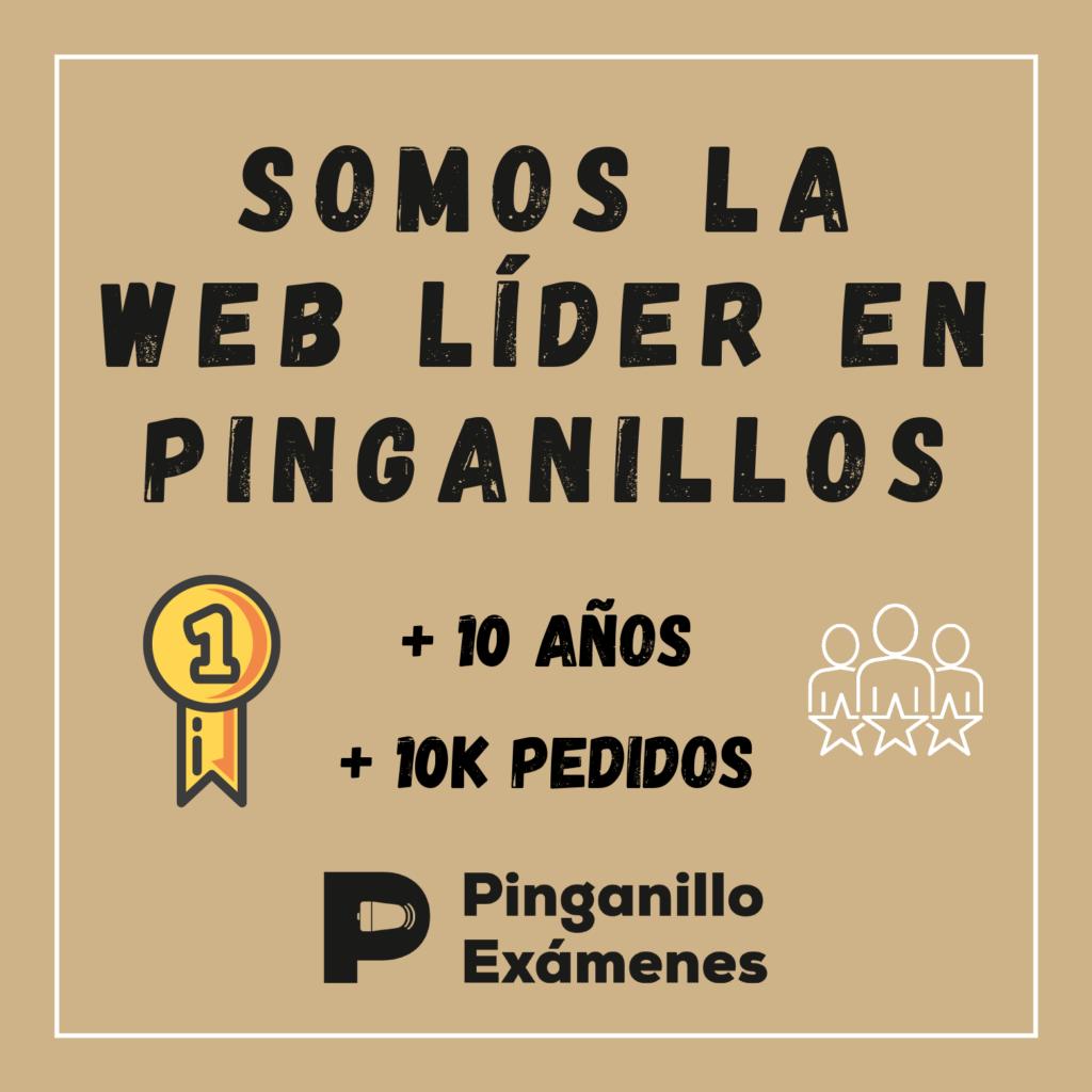 Pinganillo Examenes Web Lider